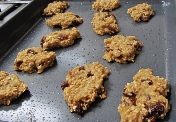 oaty banana and raisin bites (600x419)