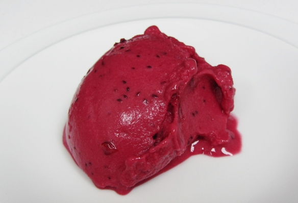 blackcurrant frozen yoghurt